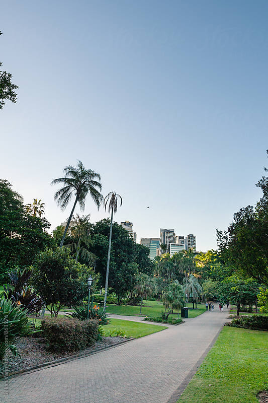 a glimpse of highrises from a city parkland by Gillian Vann for Stocksy United