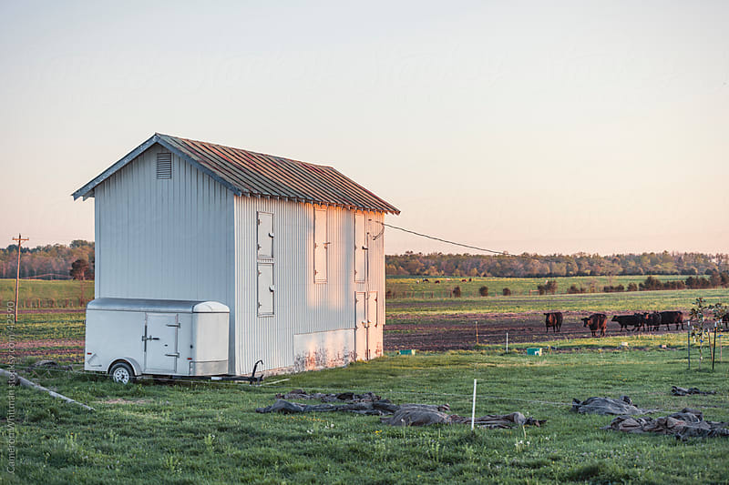 Feed Shed On A Rural Virgina Farm by Cameron Whitman for Stocksy United