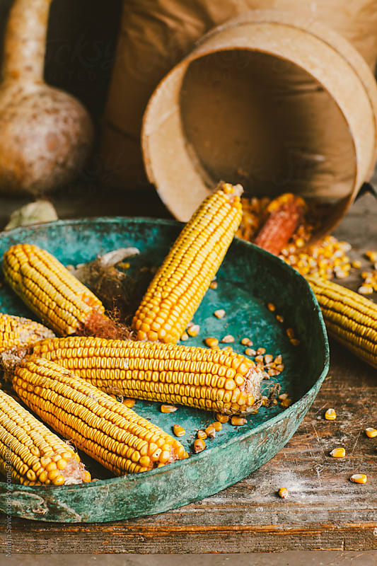Sieve and ripe corn on the blue plate. by Marija Savic for Stocksy United