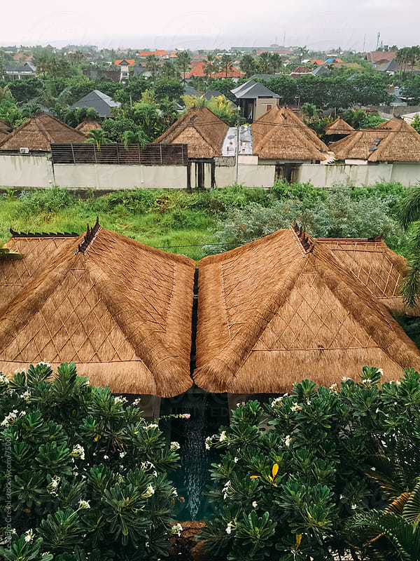 Thatched roofs between vegetation  by Leandro Crespi for Stocksy United