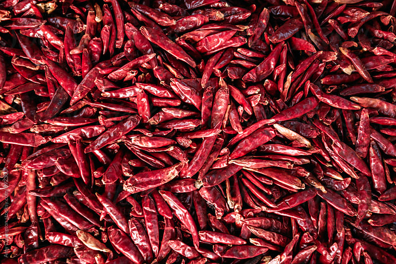 Dried red hot chili peppers by Amy Covington for Stocksy United