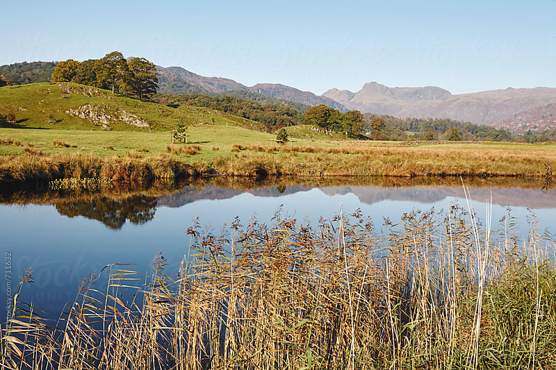 Langdale Pikes reflected in the River Brathay. Cumbria, UK. by Liam Grant for Stocksy United