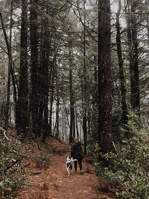 Redwoods and Rodger by Sidney Morgan for Stocksy United