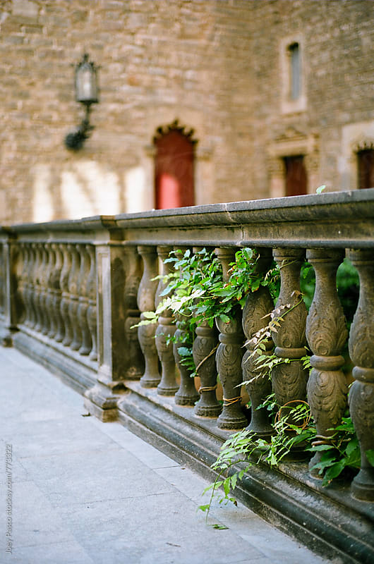 Foliage Through a Stone Railing by Joey Pasco for Stocksy United