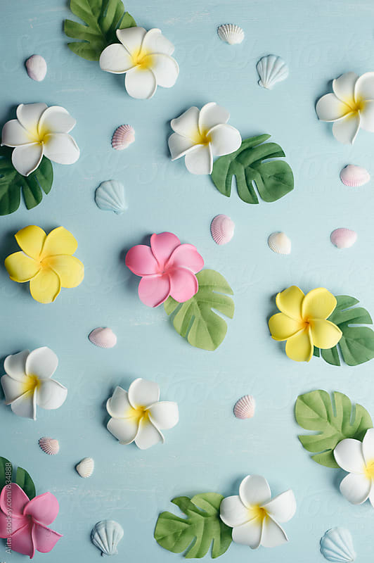 Tropical background by Alita Ong for Stocksy United
