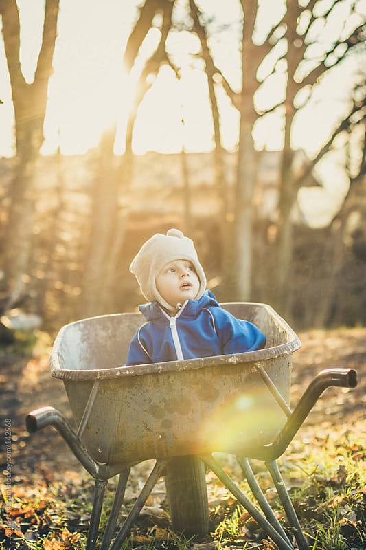 toddler sitting in a wheel barrow by Leander Nardin for Stocksy United