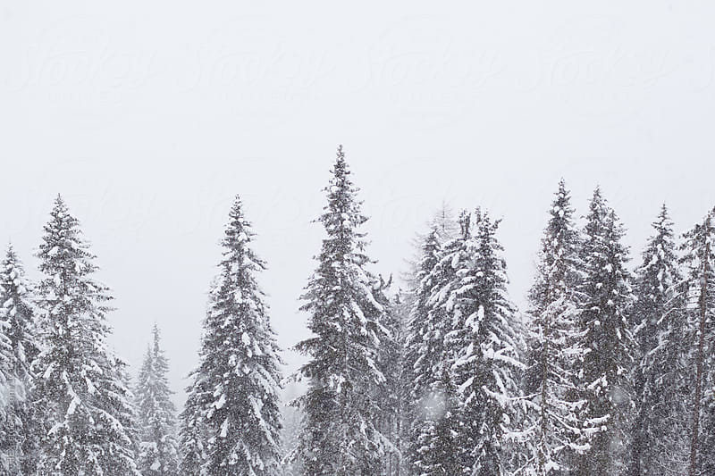 Winter Alps Landscape by HEX. for Stocksy United