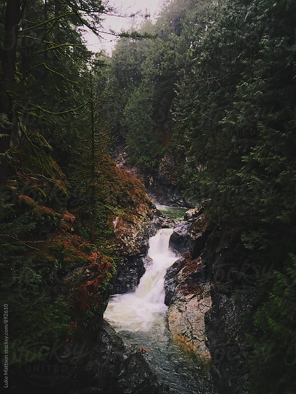 Small Waterfall Plunging Through Deep Green Forest by Luke Mattson for Stocksy United