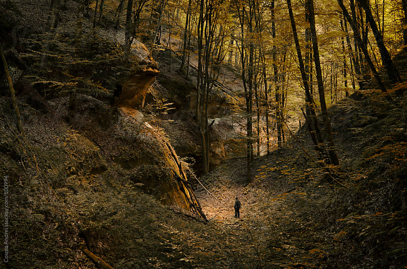 Man sitting in a sunspot in a forest in autumn by Cosma Andrei for Stocksy United