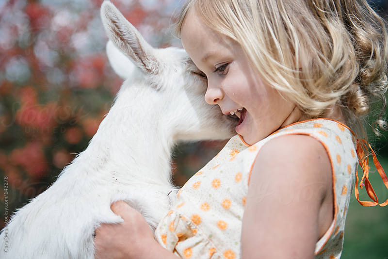 Young girl on farm plays with her pet goat by Cara Dolan for Stocksy United