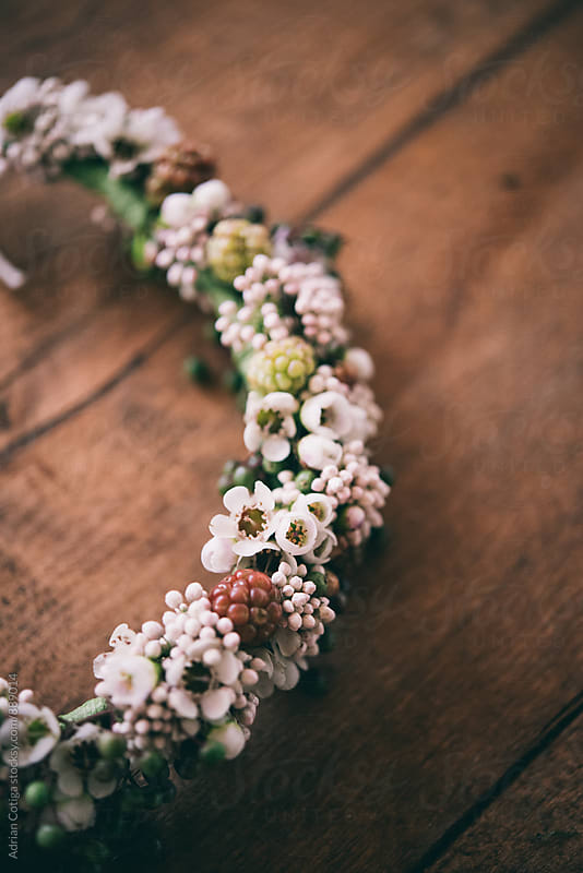 Waxflowers and riceflowers crown by Adrian Cotiga for Stocksy United