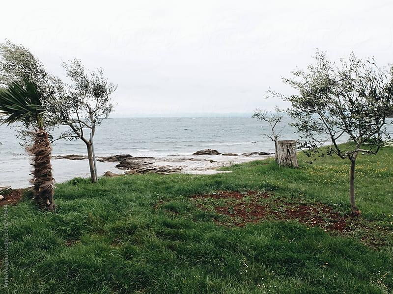 An empty seashore in Croatia by Anna Malgina for Stocksy United
