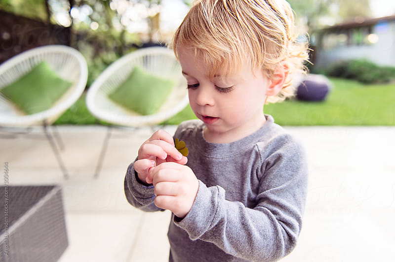 Close up of a toddler examining a clover leaf in a yard  by Angela Lumsden for Stocksy United