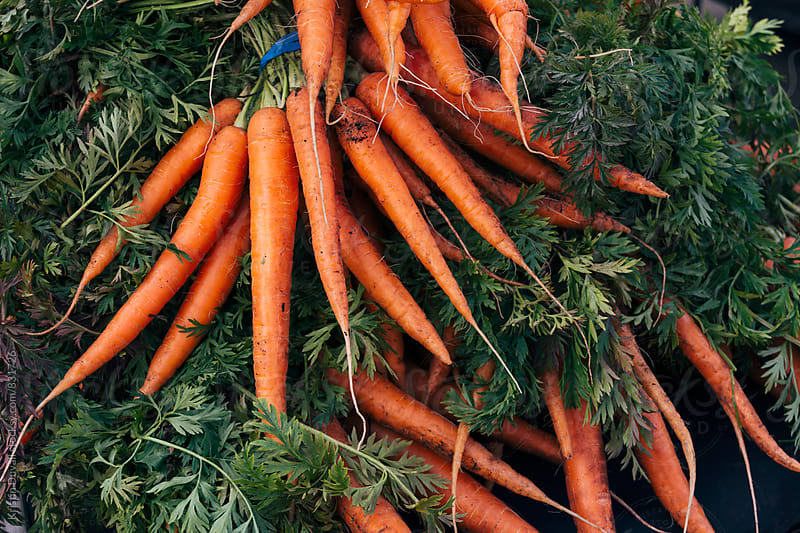 Fresh bunches of carrots at market by Kristin Duvall for Stocksy United