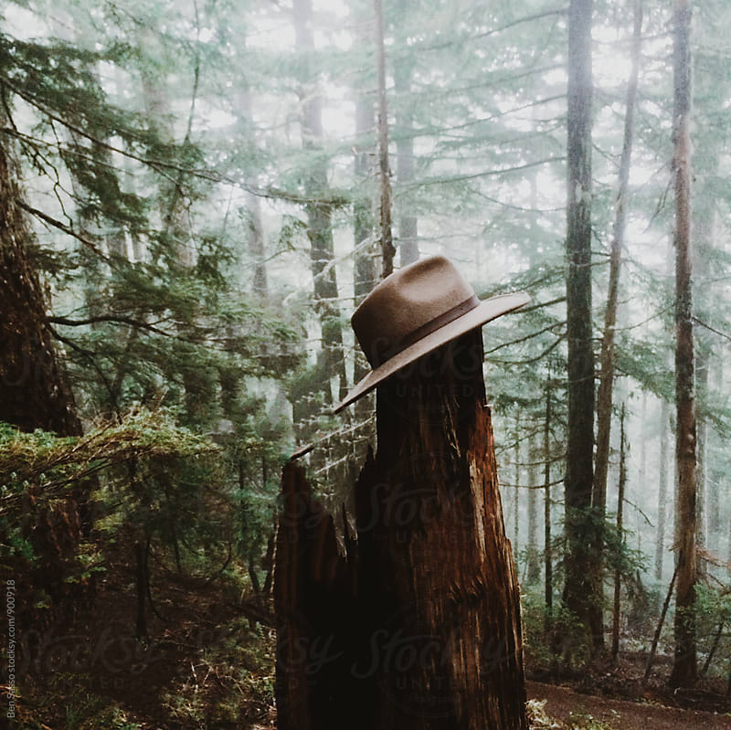 Hat on stump in fog by Ben Sasso for Stocksy United
