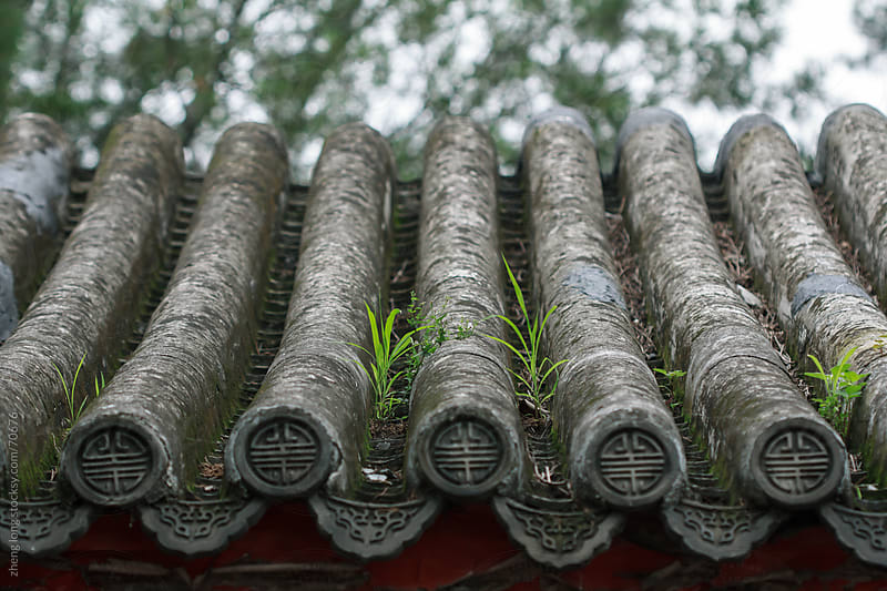 The grass grows on the roof of Chinese  ancient buildings by zheng long for Stocksy United