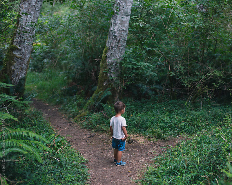 Young boy exploring the forest alone - standing at fork in the path by Rob and Julia Campbell for Stocksy United