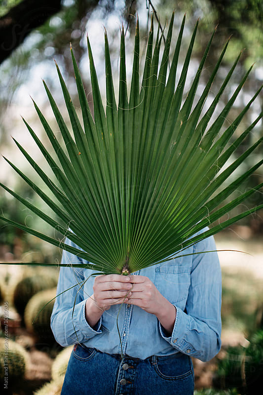 Palm in hand by Matt and Tish for Stocksy United
