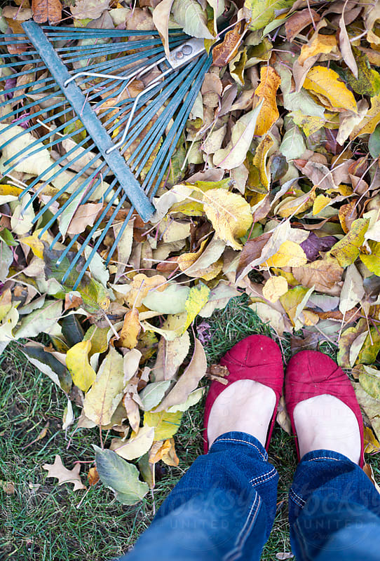 Feet of girl in red flats and jeans looking down at a rake and fall leaves by Carolyn Lagattuta for Stocksy United