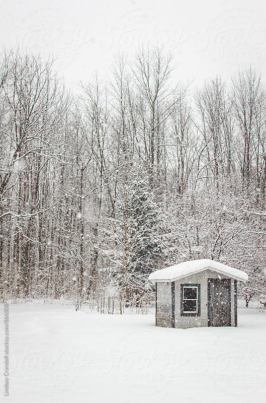 Small shack in the woods during a snowstorm by Lindsay Crandall for Stocksy United