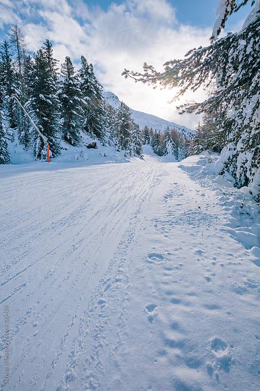 Ski slope on the Alps by Davide Illini for Stocksy United