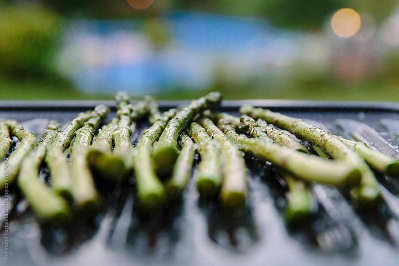 Asparagus Ready for Grilling by Raymond Forbes LLC for Stocksy United