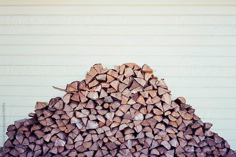 Wood.  by Nina Zivkovic for Stocksy United