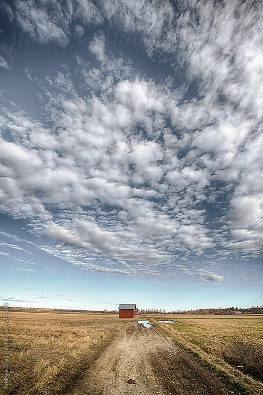 Scenery of rural farmland in north of Sweden by Andreas Gradin for Stocksy United