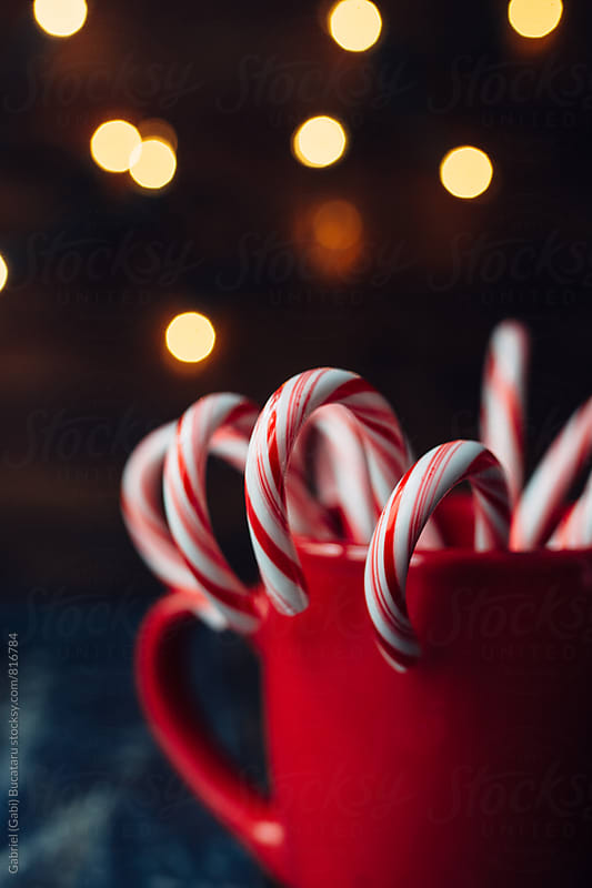 Candy canes and Christmas lights by Gabriel (Gabi) Bucataru for Stocksy United