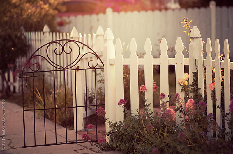 Dreamy sunlit garden with white picket fence and decorative gate by Rachel Bellinsky for Stocksy United