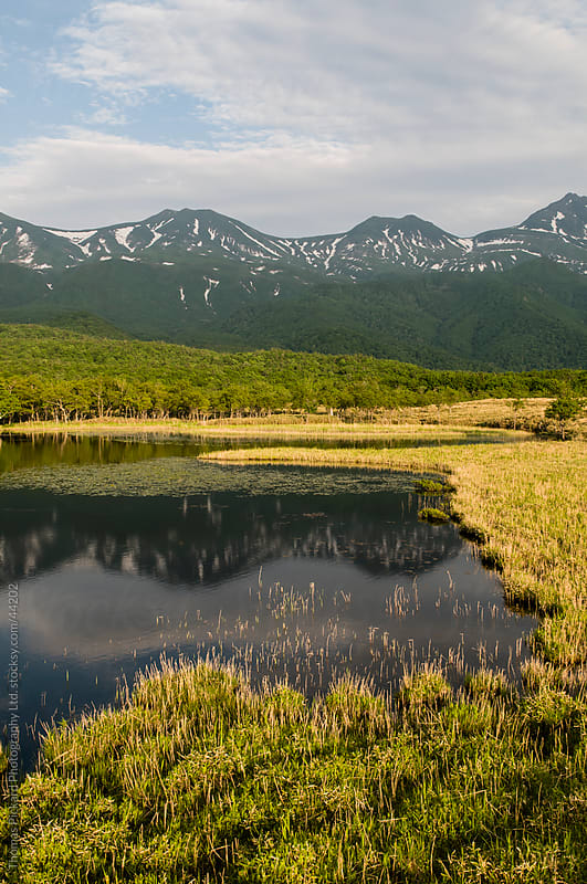 Shiretoko-goko (Five Lakes), Shiretoko National Park, Hokkaido, Japan. by Thomas Pickard Photography Ltd. for Stocksy United