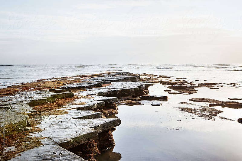 Rocky ledge and calm seas by James Ross for Stocksy United