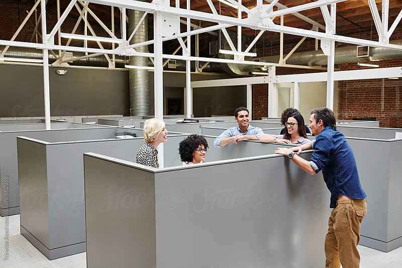 Group portrait of millennials in cubicles at start up business by Trinette Reed for Stocksy United