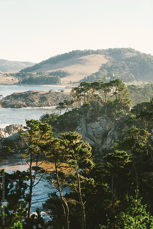 Point Lobos, Big Sur, California by Joel Bear Studios for Stocksy United
