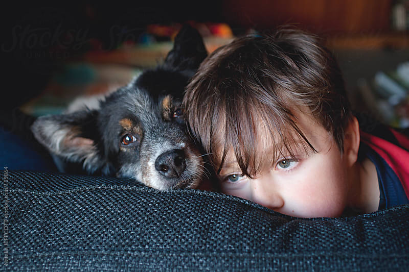 A young boy sits on a couch with his dog and dreams by Natalie JEFFCOTT for Stocksy United