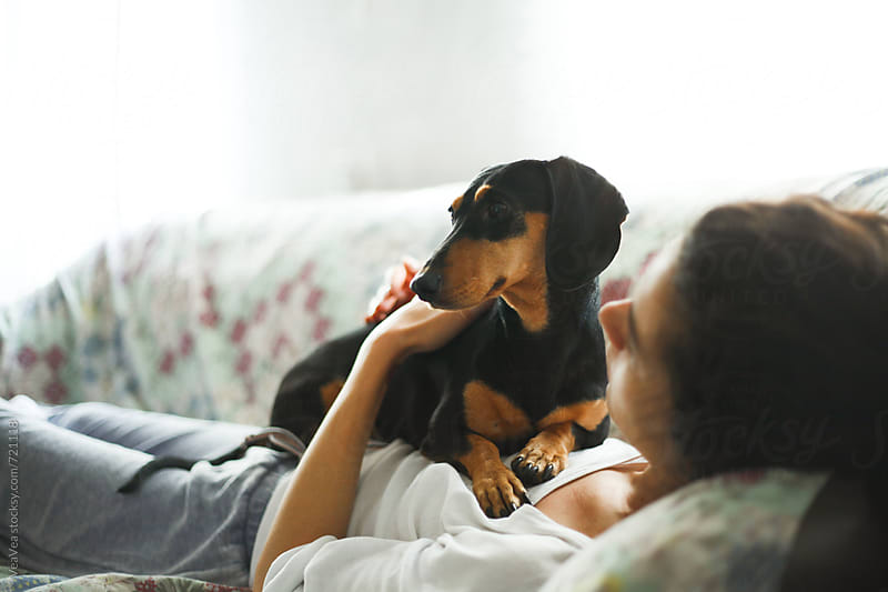 Small black dachshund lying on the couch with a young woman  by Marija Mandic for Stocksy United