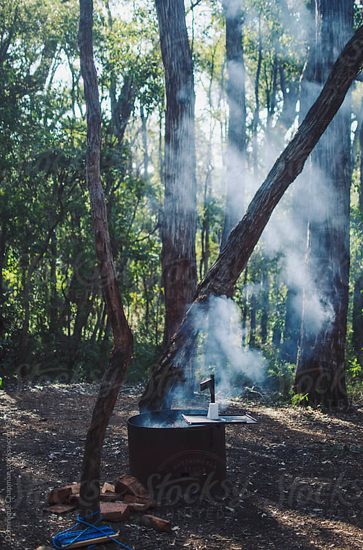 Smoke drifting through forest from campfire by Dominique Chapman for Stocksy United