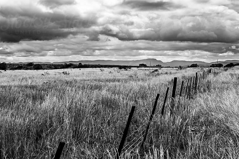 Old fence in a dry field by Lior + Lone for Stocksy United