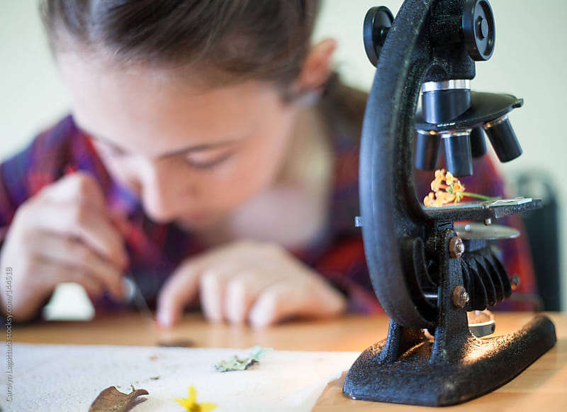 Young girl looking at various things through an old school microscope in her home by Carolyn Lagattuta for Stocksy United