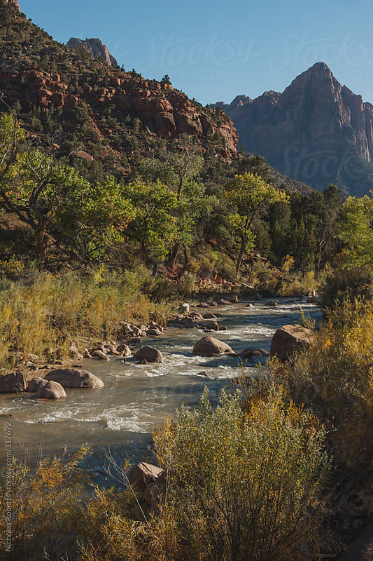 Virgin River in Zion by Nicholas Roberts for Stocksy United