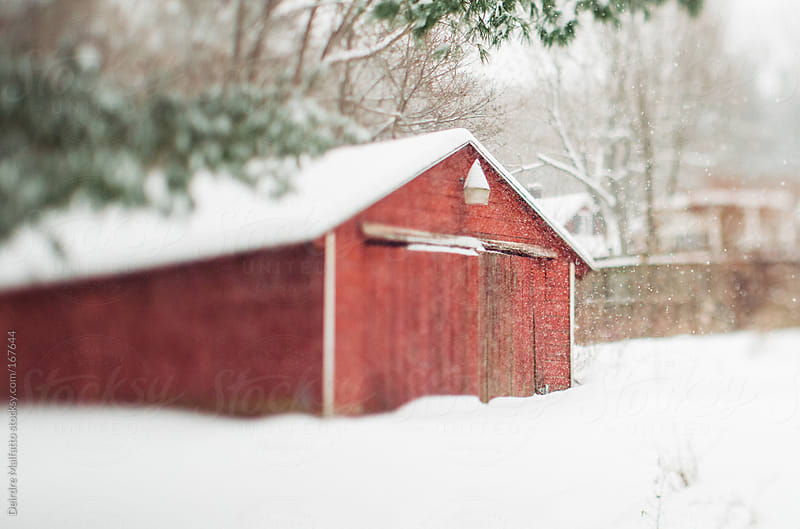 old red barn in the snow by Deirdre Malfatto for Stocksy United