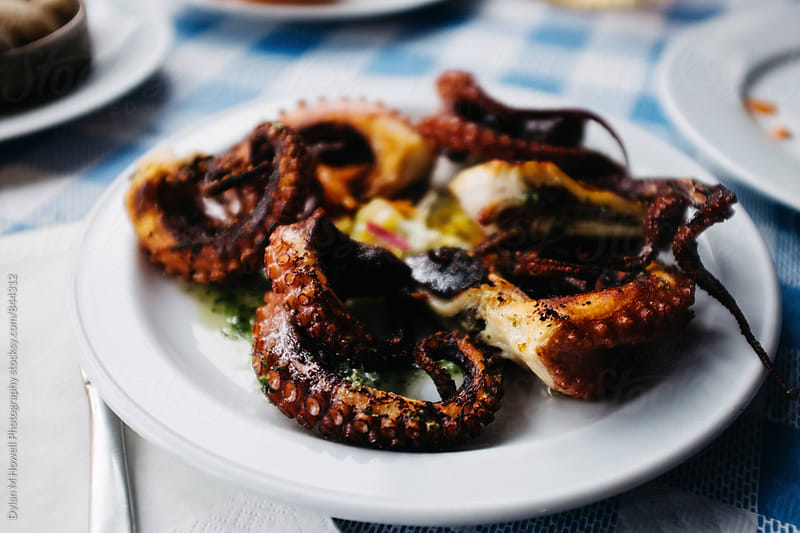 Grilled Octopus by Dylan M Howell Photography for Stocksy United