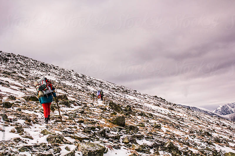 Back view of several hikers climbing snowed and rocky mountain by Danil Nevsky for Stocksy United