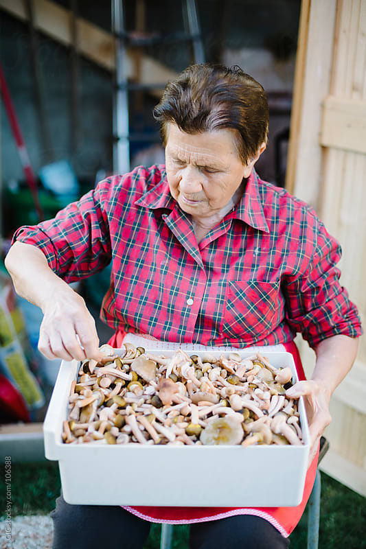 Elderly woman cleaning mushrooms by GIC for Stocksy United