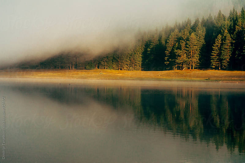 Morning on the lake by Dimitrije Tanaskovic for Stocksy United