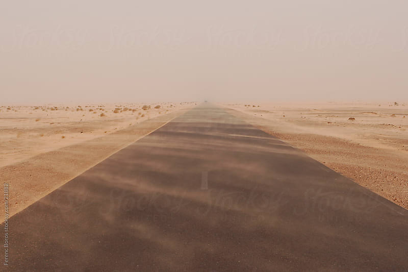 Dust plumes across the road in sandstorm at Sahara by Ferenc Boros for Stocksy United