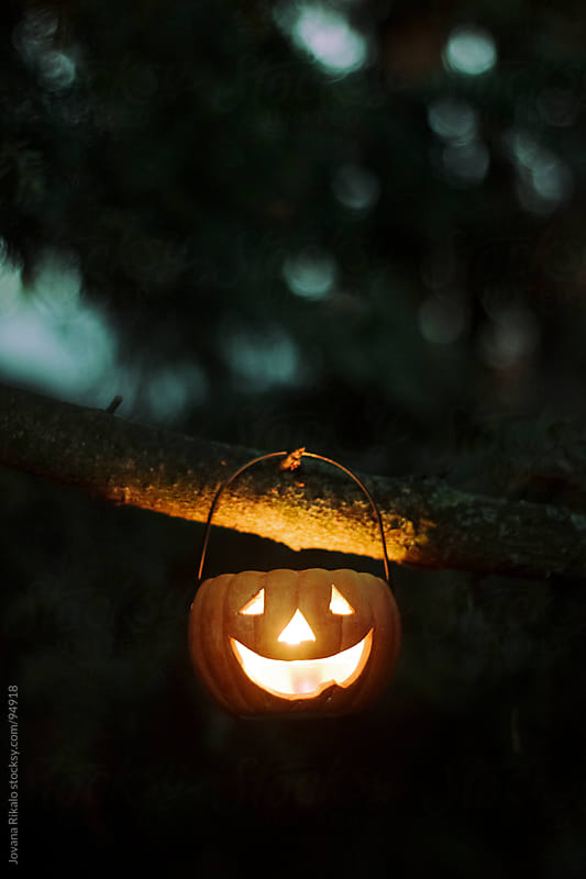 Pumpkin candle hanging on the tree by Jovana Rikalo for Stocksy United