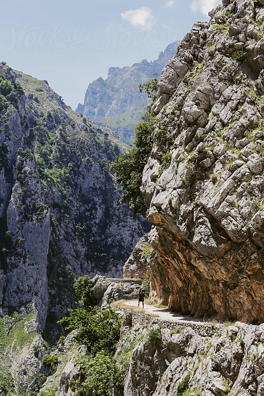 Hiker walking on a scenery path on Picos de Europa, Spain by Luca Pierro for Stocksy United