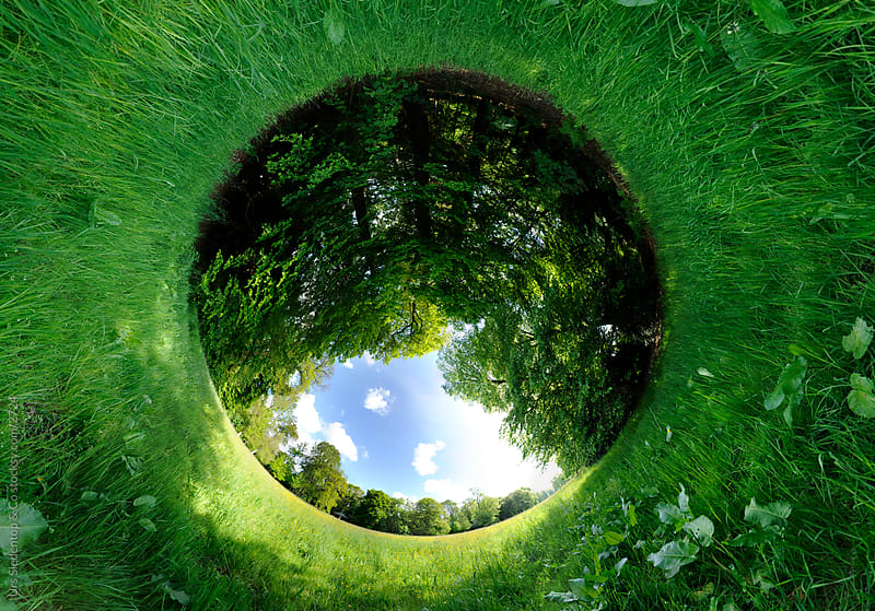 Meadow Spherical View - Little planet spherical panorama inside out by Urs Siedentop & Co for Stocksy United