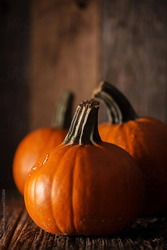 Small Pumpkins on Rustic Wood with Copyspace by Jeff Wasserman for Stocksy United